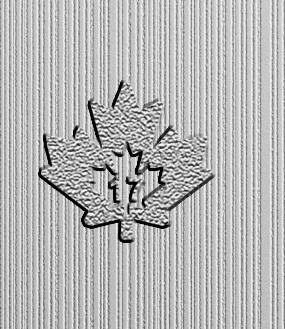 2017-silber-maple-10oz-sicherheitsfeature